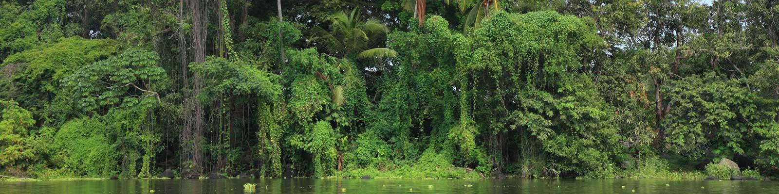 Nicaragua Immobili - Case vacanza, immobili di prestigio, immobili sulla spiaggia - Investimenti di valore